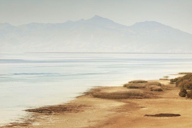 Lac Ichkeul - Tunisie