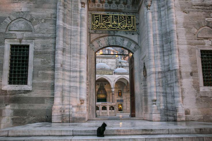 Mosquée Süleymaniye - Istanbul - Turquie