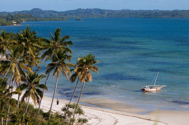 De la savane de Selous à l'île de Pemba - Une Tanzanie secrète