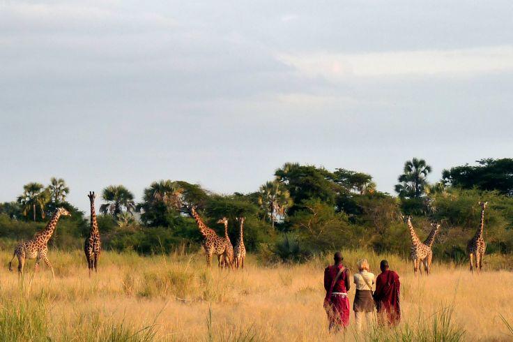 Tanzanie, l'essentiel