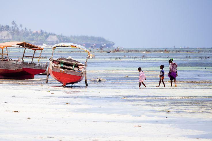 Tanzanie & Zanzibar - Le duo parfait safari-plage