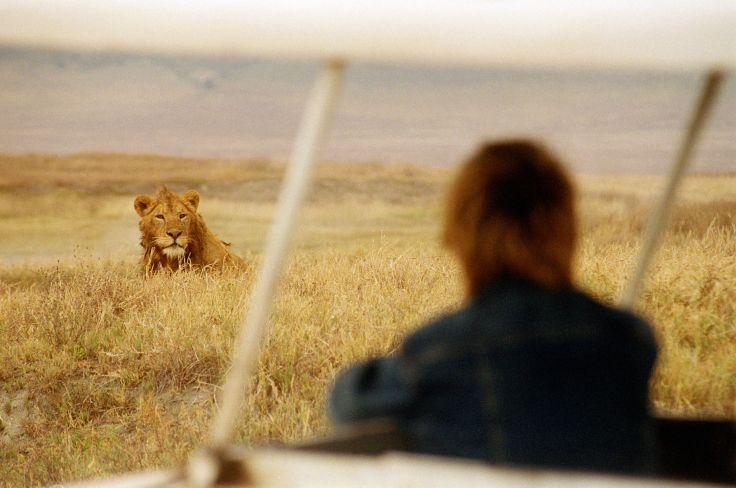 Grands safaris & chemins de traverse - 100% Tanzanie
