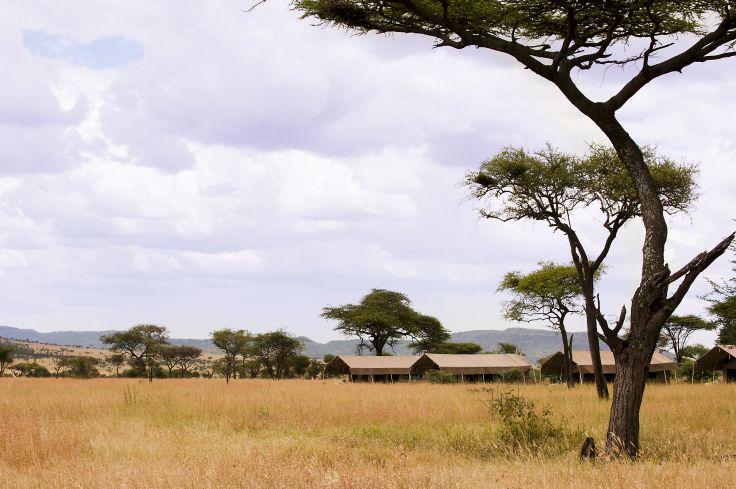 Serengeti - Centre/Seronera - Tanzanie