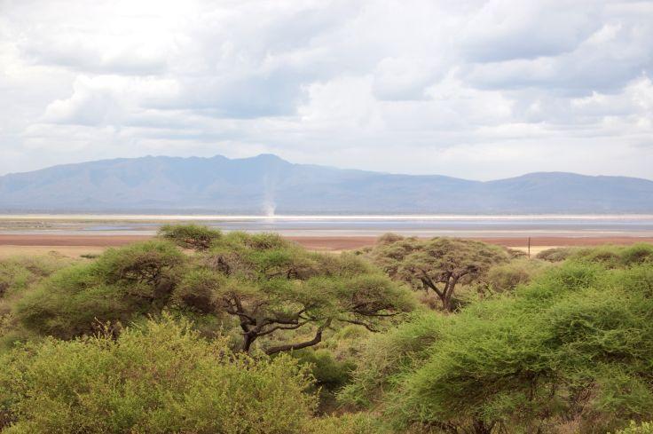 Parc national du lac Manyara - Vallée du Rift - Région d'Arusha - Tanzanie