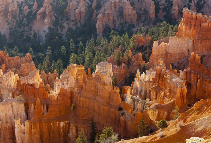 Bryce Canyon - Utah - Etats-Unis
