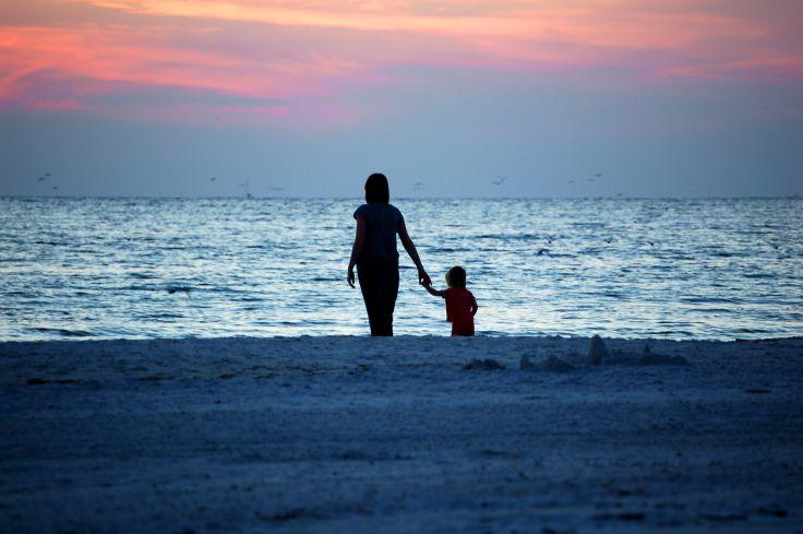Sable fin, lamantins & dauphins - Une Floride nature en famille