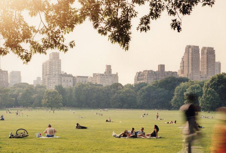 Central Park - Manhattan - New York - Etats-Unis