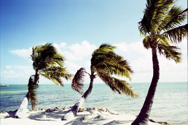 Brancher Naples en Floride