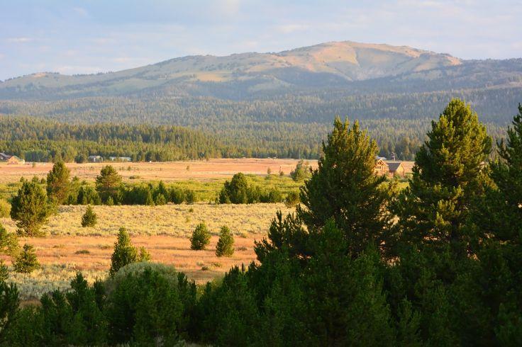 Parc national de Yellowstone - Wyoming - Etats-Unis