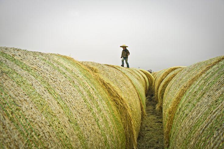 agriculteurs gratuits datant des sites aux États-Unis