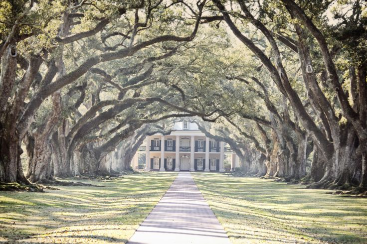 Plantation d'Oak Alley - Louisiane - Etats-Unis