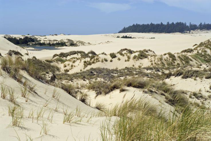 Oregon Dunes National Recreation Area - Etats-Unis