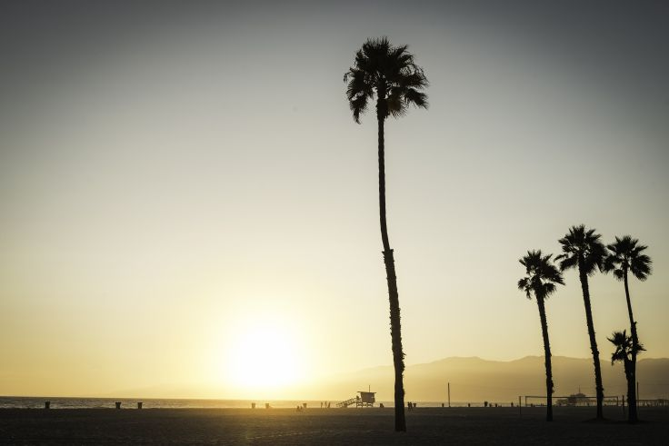 Venice Beach - Los Angeles - Californie - Etats-Unis