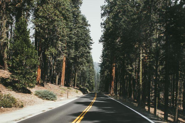 Alentours du Lac Tahoe - Etats-Unis