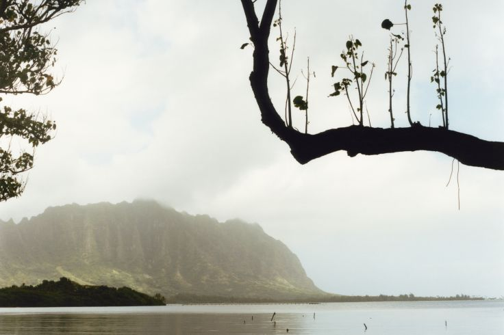 Oahu - Hawaï - Etats-Unis
