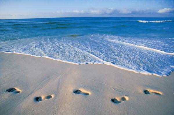 Sur Mesure au États-Unis : Pélicans et sables blancs : la Floride en famille
