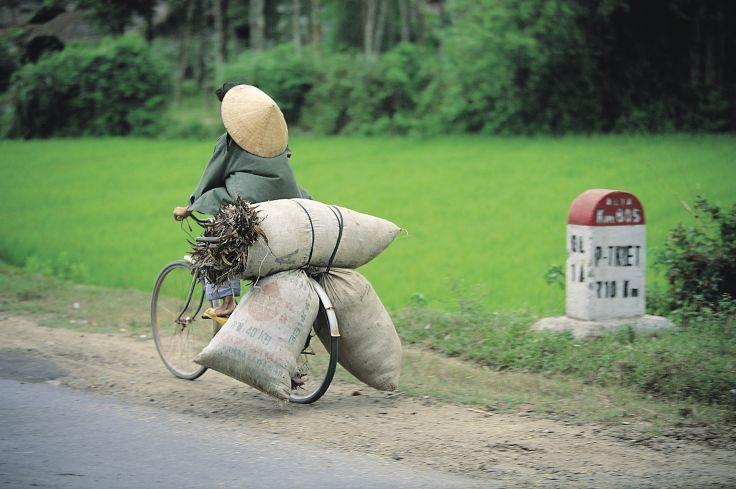 Du Nord au Sud - Premier voyage au Vietnam