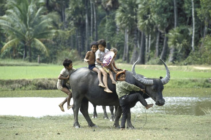 Aventures au pays du Dragon - Le Vietnam en famille