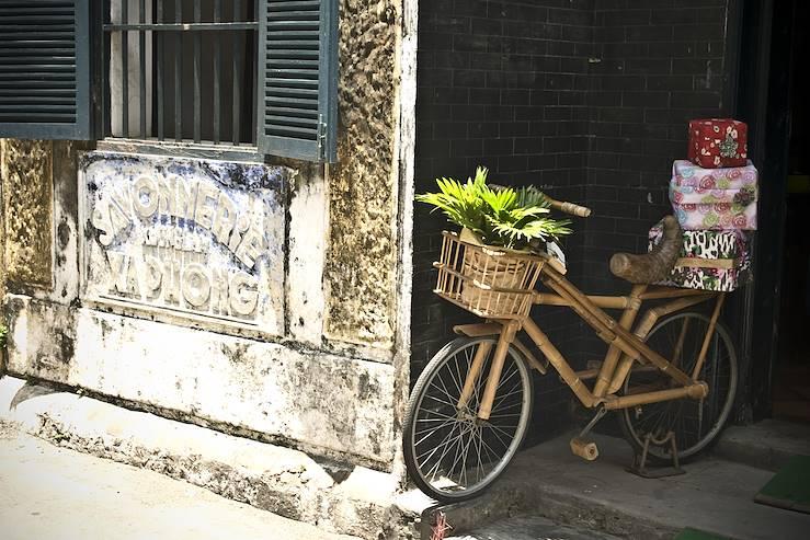 Au cœur du Vietnam- Hanoi, les montagnes du Nord, Halong & Hôi An