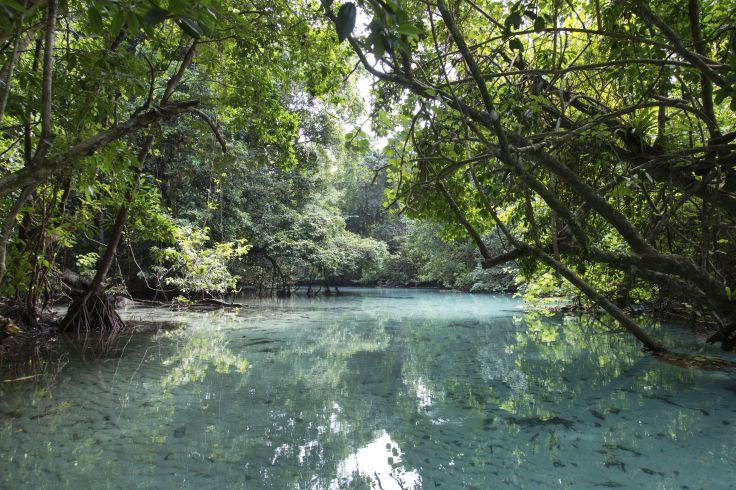 Trou Tleu - Espiritu Santo - Vanuatu