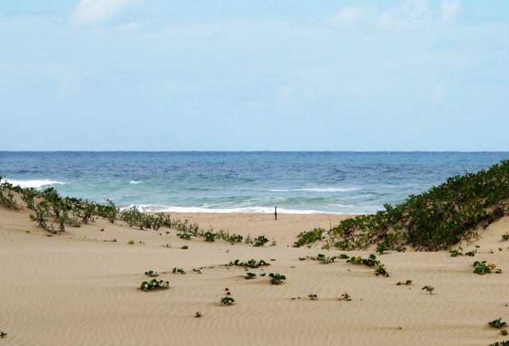 Jabula Beach - Santa Lucia - Afrique du Sud