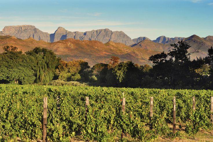 Région du Cap Occidental - Afrique du Sud