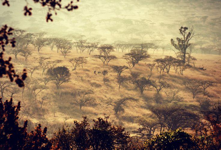 Bergville - Afrique du Sud