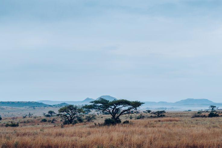 KwaZulu-Natal - Afrique du Sud