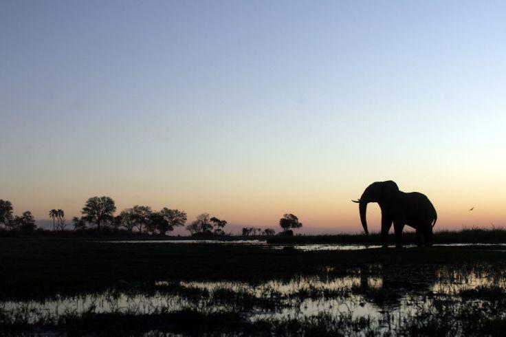 Zimbabwe & Botswana - En marge des foules & adresses de charme