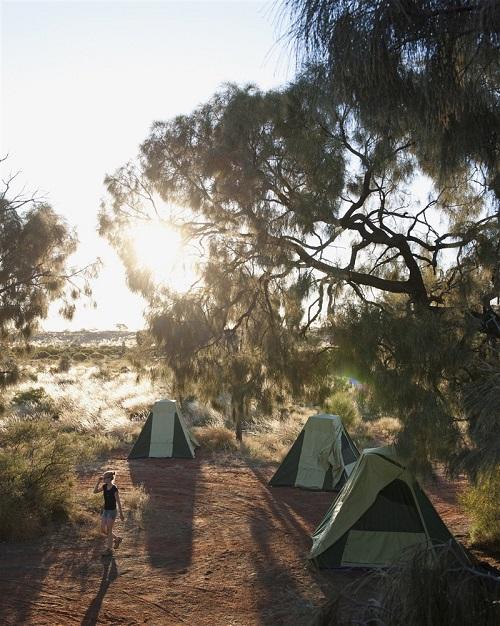 Amis qui font du camping en Australie