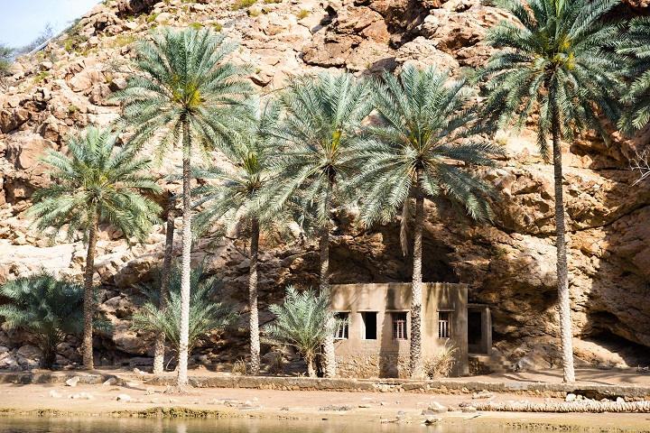 Vue du Wadi Shab