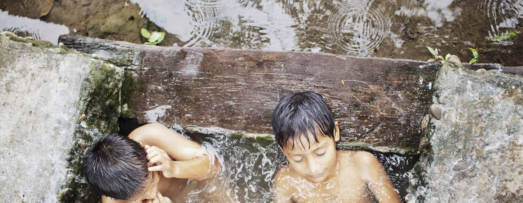Amazonie :  menaces sur la forêt (vidéo)