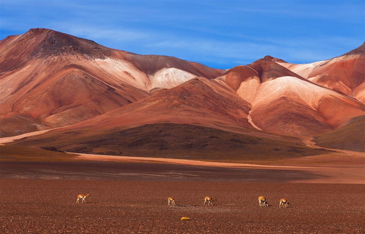 5 exp riences a vivre en bolivie et nulle part ailleurs le mag voyageurs. Black Bedroom Furniture Sets. Home Design Ideas